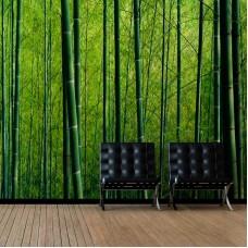 Bamboo Trunk