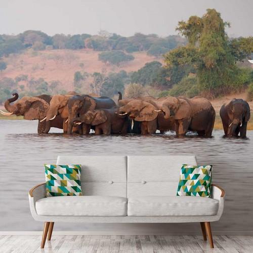 Mud Wallow Elephants