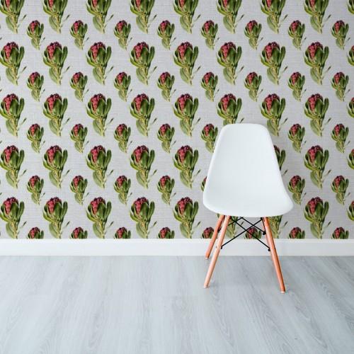 Protea Grandiceps Colour